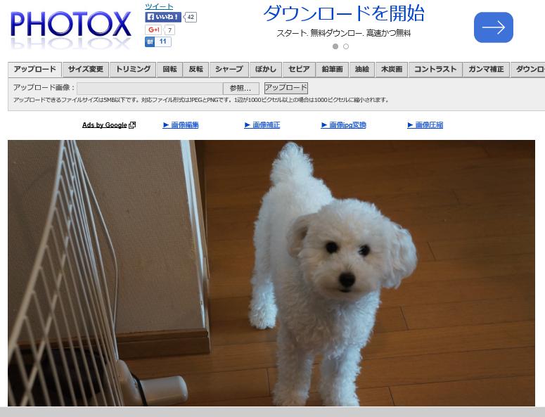 PHOTOX3